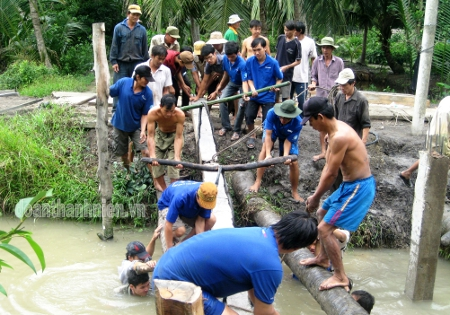 Volunteers are constructing bridge in Ben Tre province